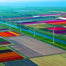 Сколько стоит жизнь в Голландии?