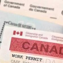Visa setelah lulus kuliah di Kanada