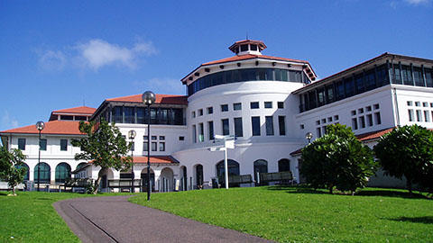 Massey Albany Atrium Building