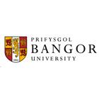 Bangor International College