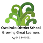 Owairaka District School